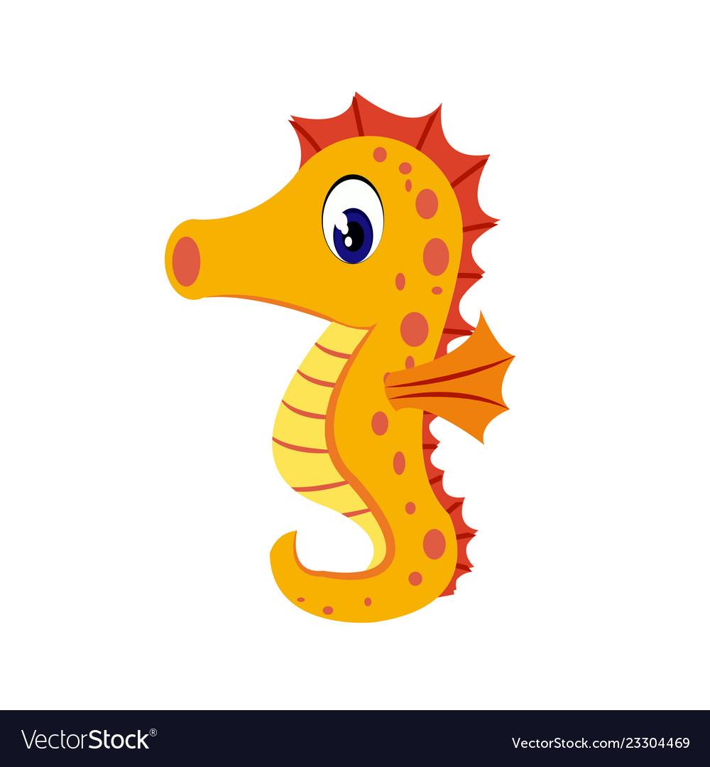 Seahorse cartoon or seahorse clipart cartoon.