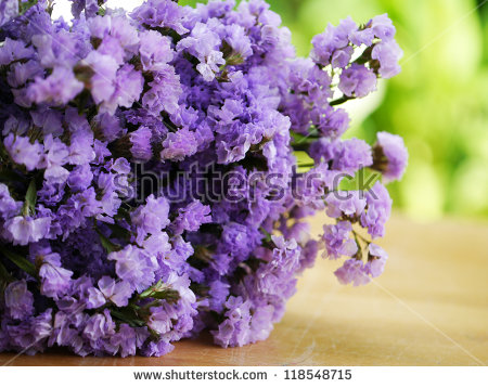 Statice Flower Stock Photos, Royalty.
