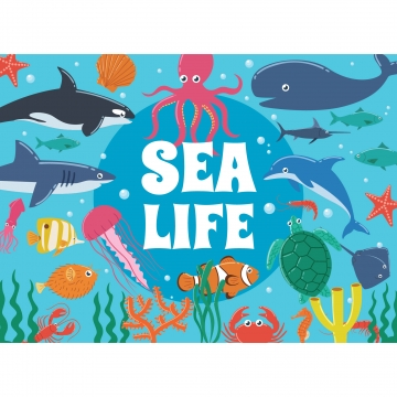 Sea Life Png, Vector, PSD, and Clipart With Transparent.