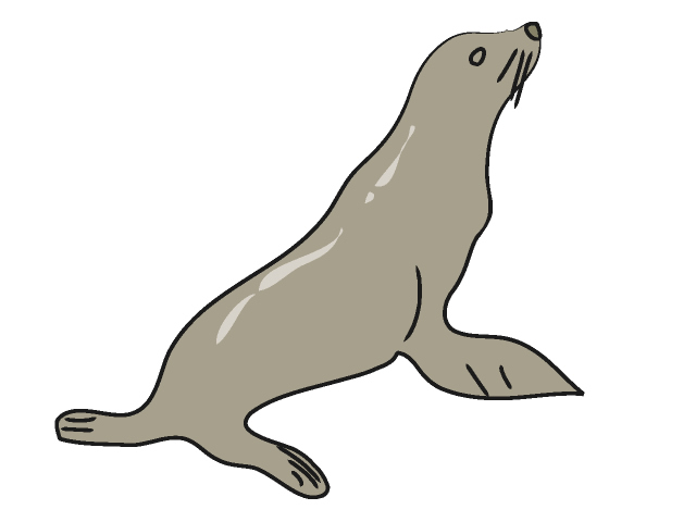 Sea Lion Clip Art Free.