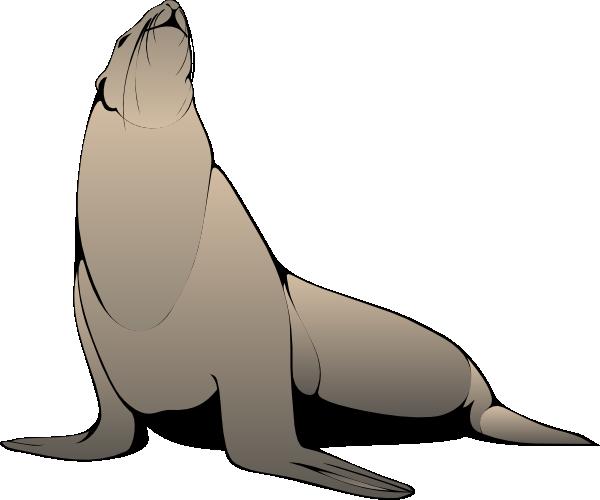 Free Sea Lion Clipart, Download Free Clip Art, Free Clip Art.