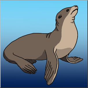 Clip Art: Sea lion Color I abcteach.com.