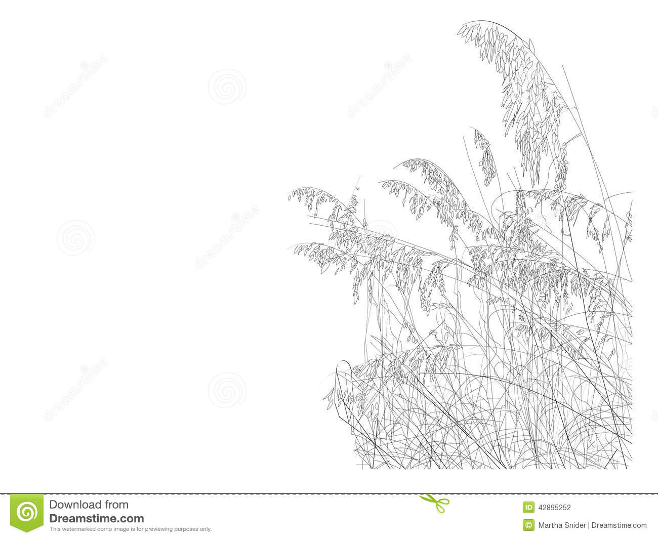 Beach Collection Sea Oats Stock Illustration.