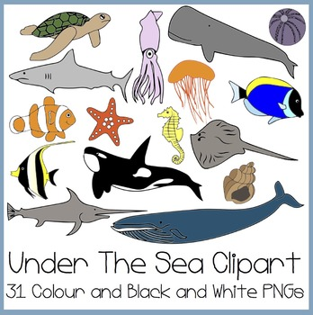 Ocean activities: FREE Clip art! Under The Sea Clip art (Finding.