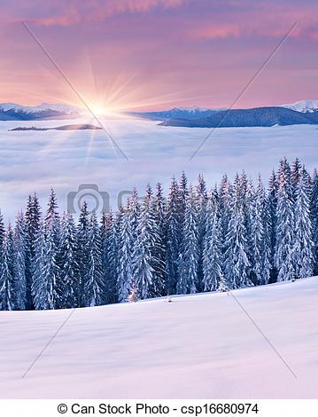 Picture of Spectacular sunrise among a sea of fog in the winter.