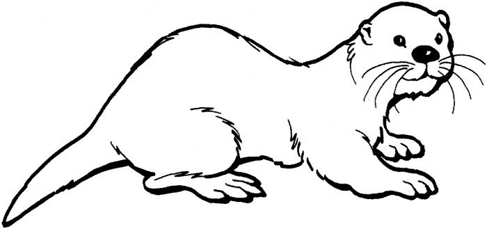 Otter! This website has all kinds of awesome coloring pages.