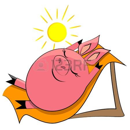 Sea Pig Images & Stock Pictures. Royalty Free Sea Pig Photos And.