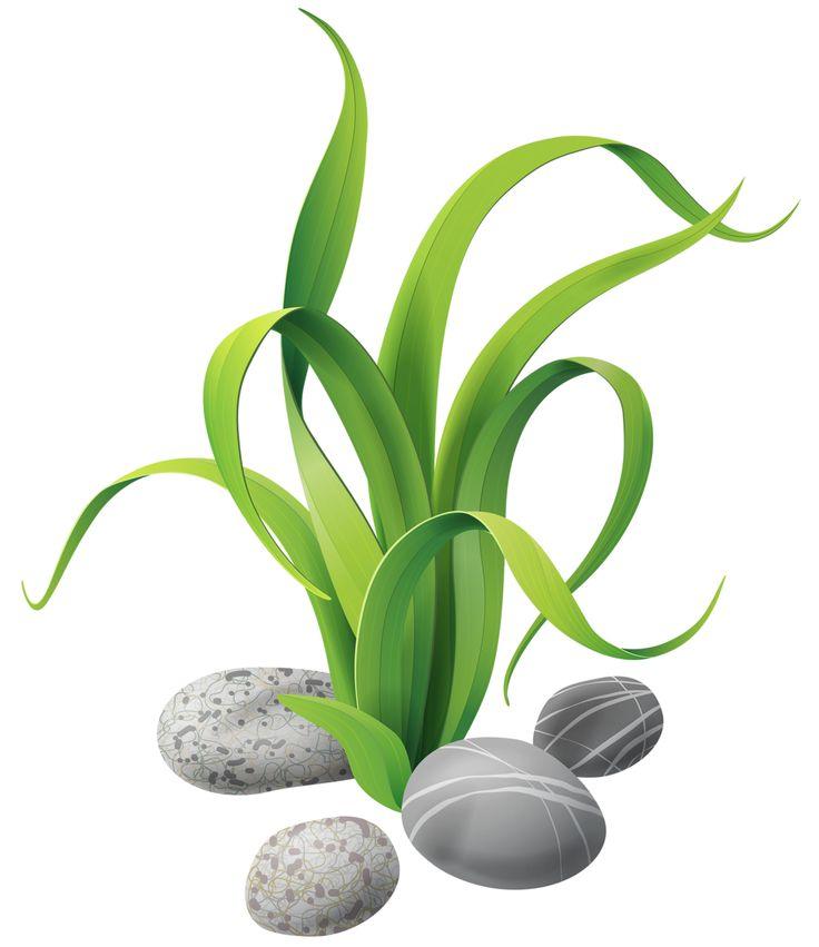 Free Sea Plants Cliparts, Download Free Clip Art, Free Clip.