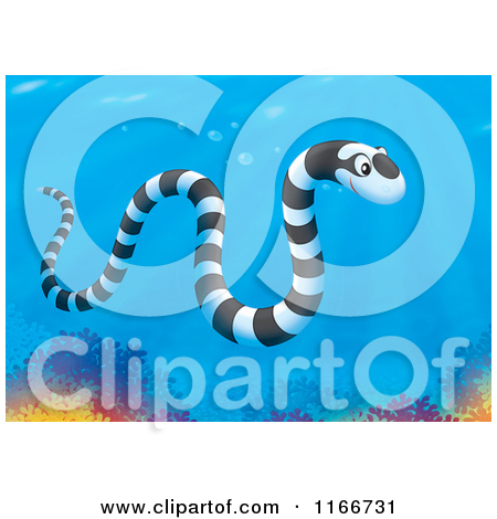 Clipart of a Cute Black and White Striped Sea Snake on a Sunken.