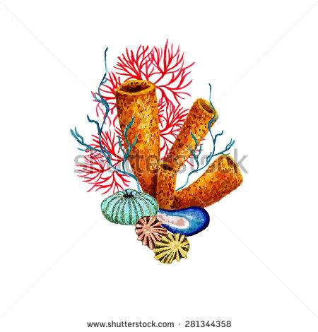 Sea Sponge Stock Photos, Royalty.