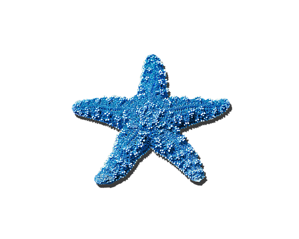Sea Star Medium Blue .png IPhone X Case.