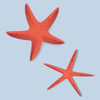 Starfish Vectors, Photos and PSD files.