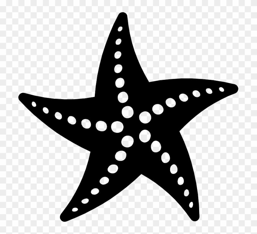 Png Starfish Black And White.