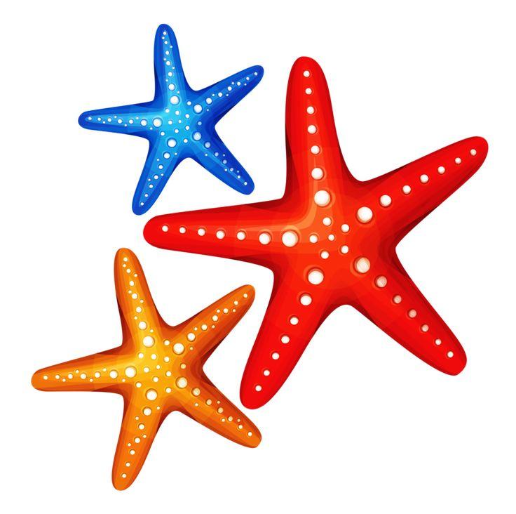 Sea stars clipart 1 » Clipart Station.