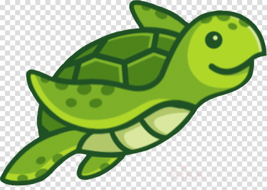 sea turtle green green sea turtle turtle cartoon clipart.