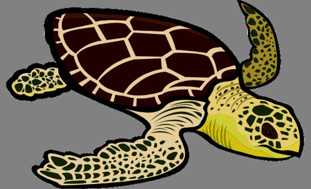 Leatherback turtle clipart sea turtles.