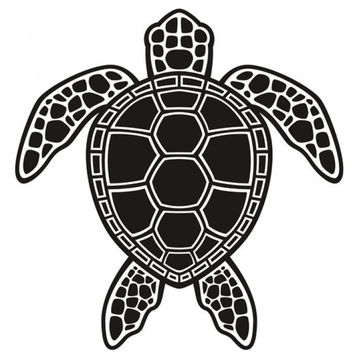 clipart sea turtle black and white.
