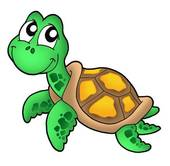Sea Turtle Clip Art.