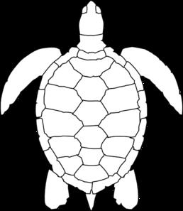 Turtle Outline Clip Art.