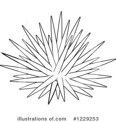 Sea Urchin Clipart.