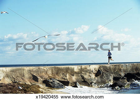 Stock Image of Young man running on sea wall, side view x19420455.
