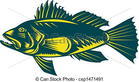 Clipart of Sea Bass.