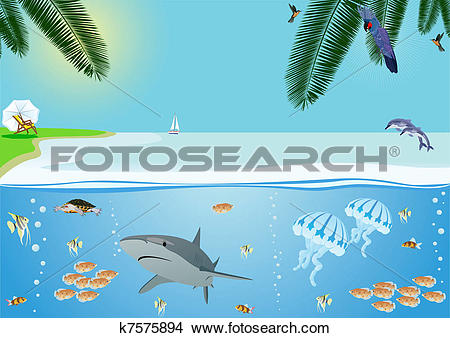 Clipart of Seacoast k7575894.