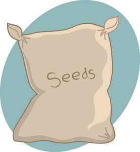 Clipart Of Seeds.