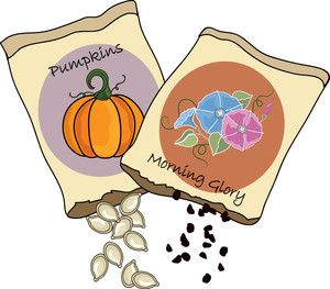 Seeds clipart - Clipground
