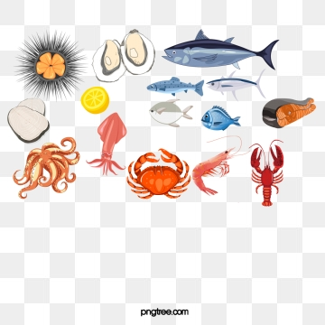 Seafood Png, Vector, PSD, and Clipart With Transparent.