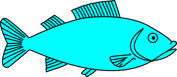 Fish Images.