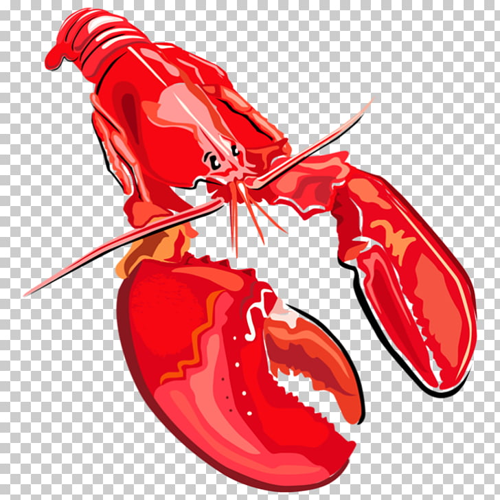 Lobster Seafood , Boston lobster PNG clipart.