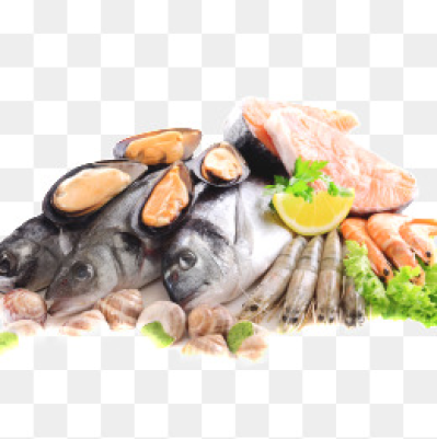 Seafood Png.