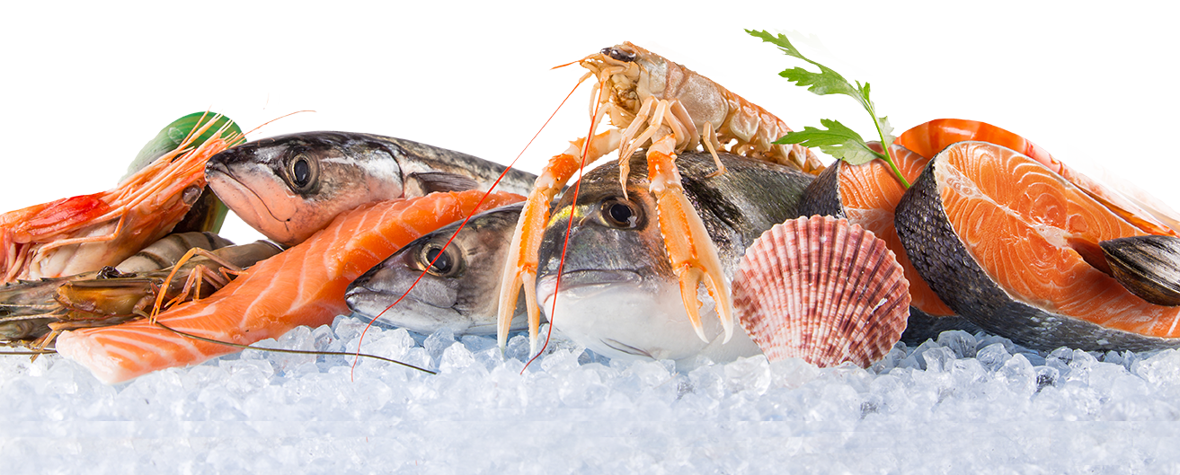 Seafood PNG Images.