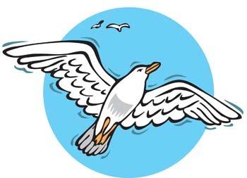 Seagull Clip Art, Vector Seagull.