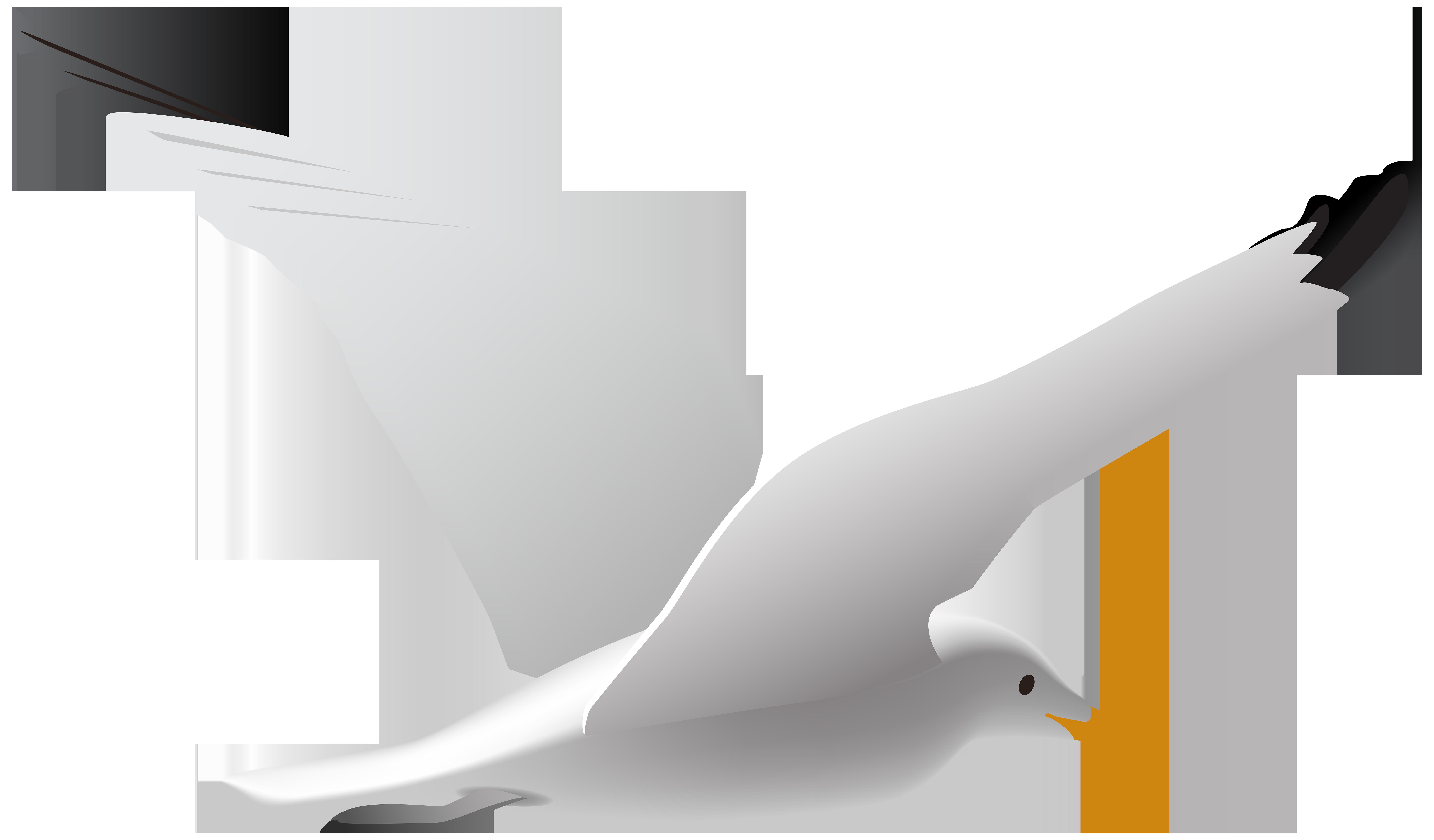 Seagull Clip Art Transparent.