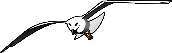Seagull Clip Art at Clker.com.
