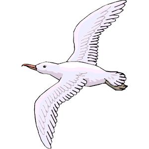 78+ Seagull Clip Art.