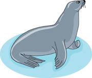 Free Seal Clipart.