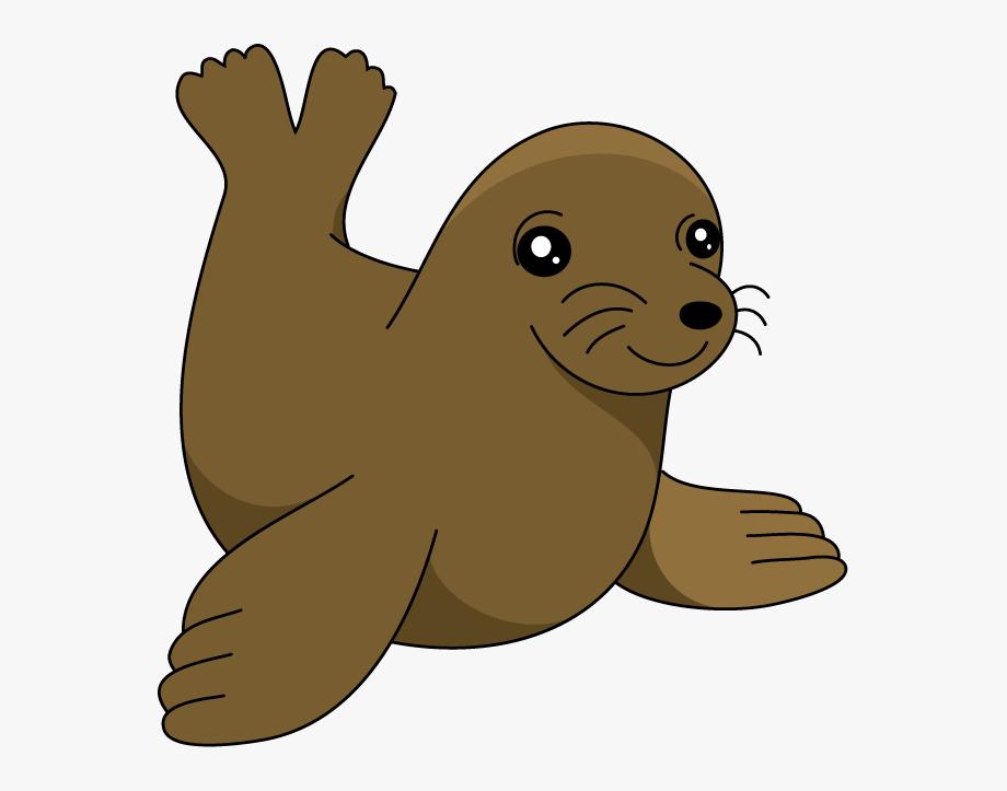 Sea Lion Clipart Seal Pup.