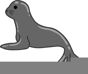 Animal Seal Clipart.