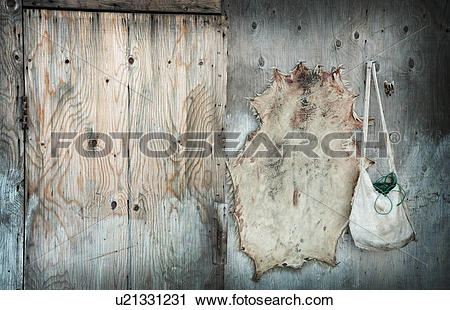 Stock Photography of Seal skin drying and seal skin purse Pond.