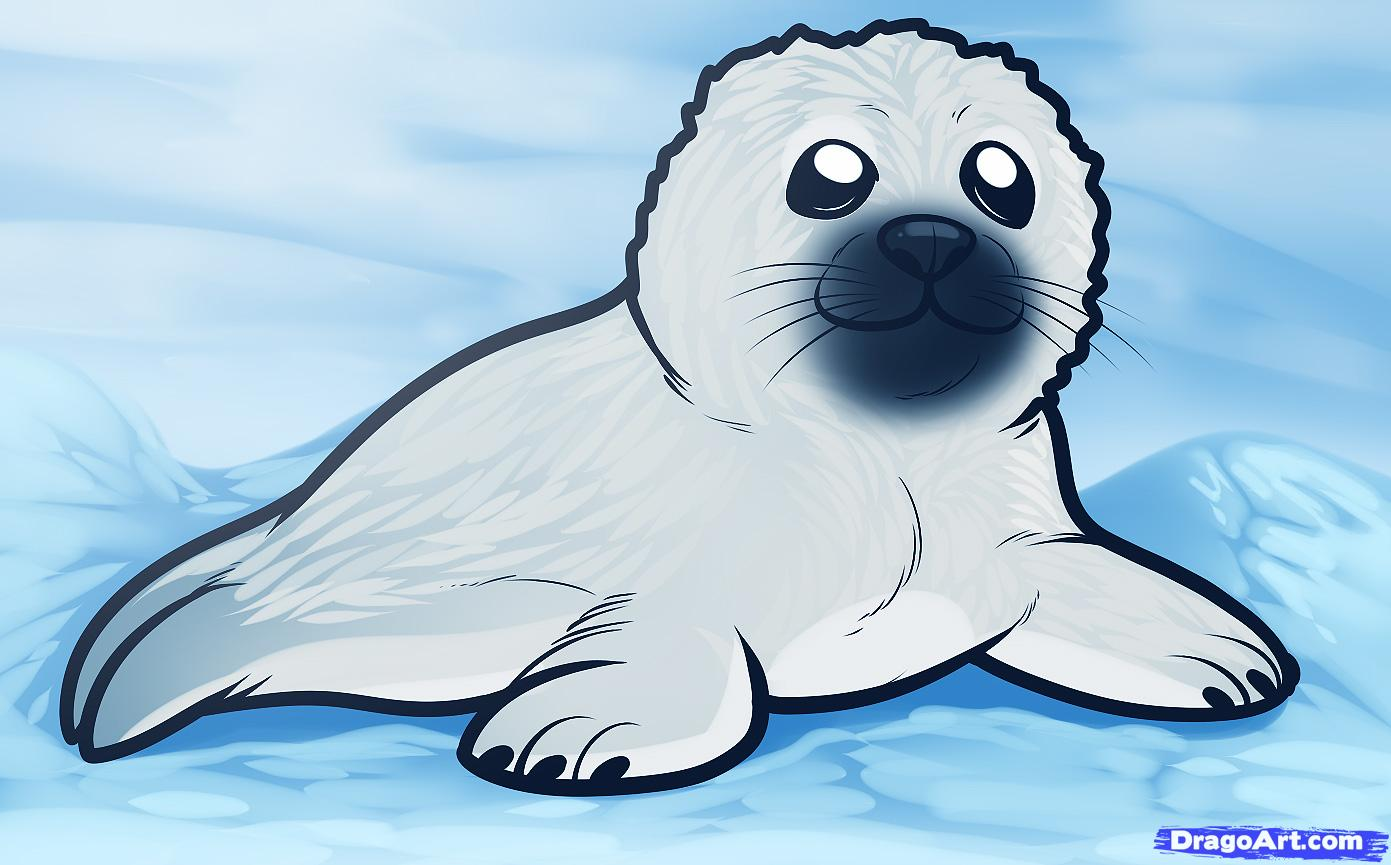 How to Draw a Seal Pup, Seal Pup, Step by Step, Sea animals.