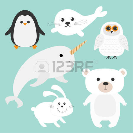 127 Seal Pup Stock Illustrations, Cliparts And Royalty Free Seal.