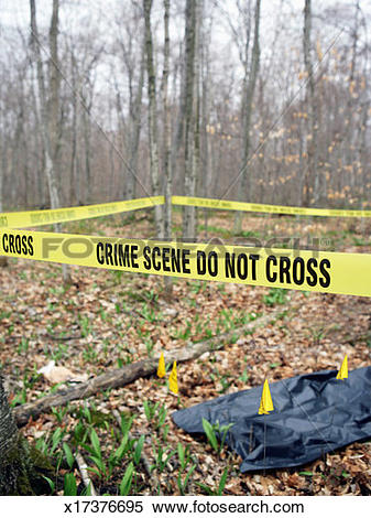 Stock Image of Crime scene in forest sealed off with police tape.
