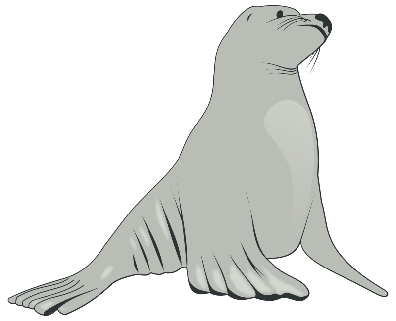 Free Clipart: Sea Lion.