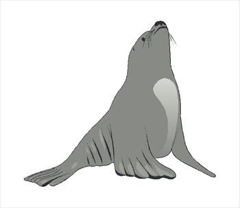 Seals clipart.