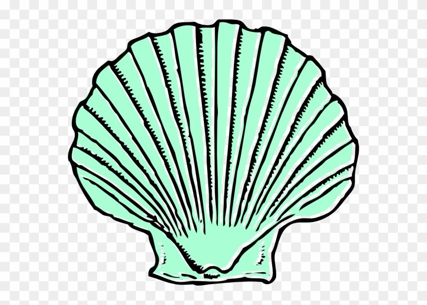Aqua Seashell Clip Art At Clipart.