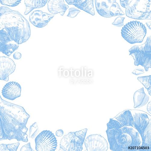 Seashells frame for your ocean life design. Elegant shells.