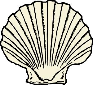 Seashell clip art borders free clipart images.